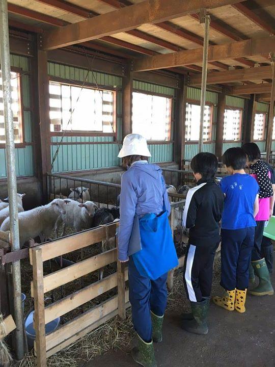 地元の中学生と小学生が見学に来ました。