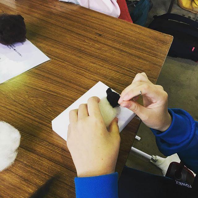 今日は地元中学生の農業体験。搾乳の見学やアスパラ給餌体験の後、羊毛フェルト細工を作ってもらってます。