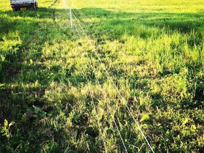 電牧柵セット完了。多分、明日から放牧します。